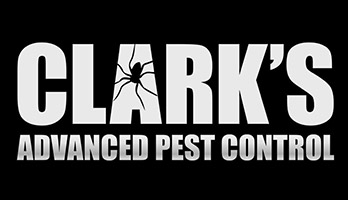 Clark's Advanced Pest Control Serving Olympia, Lacey, Tumwater and surrounding communities